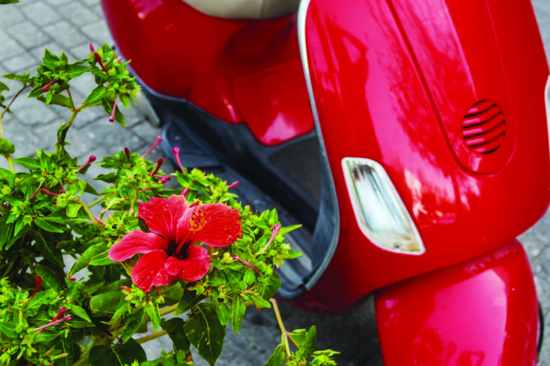 Hibiscus scarlet flower at background of retro scooter in Greece