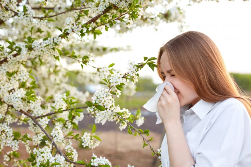 S jarem přichází alergie, jste připraveni?