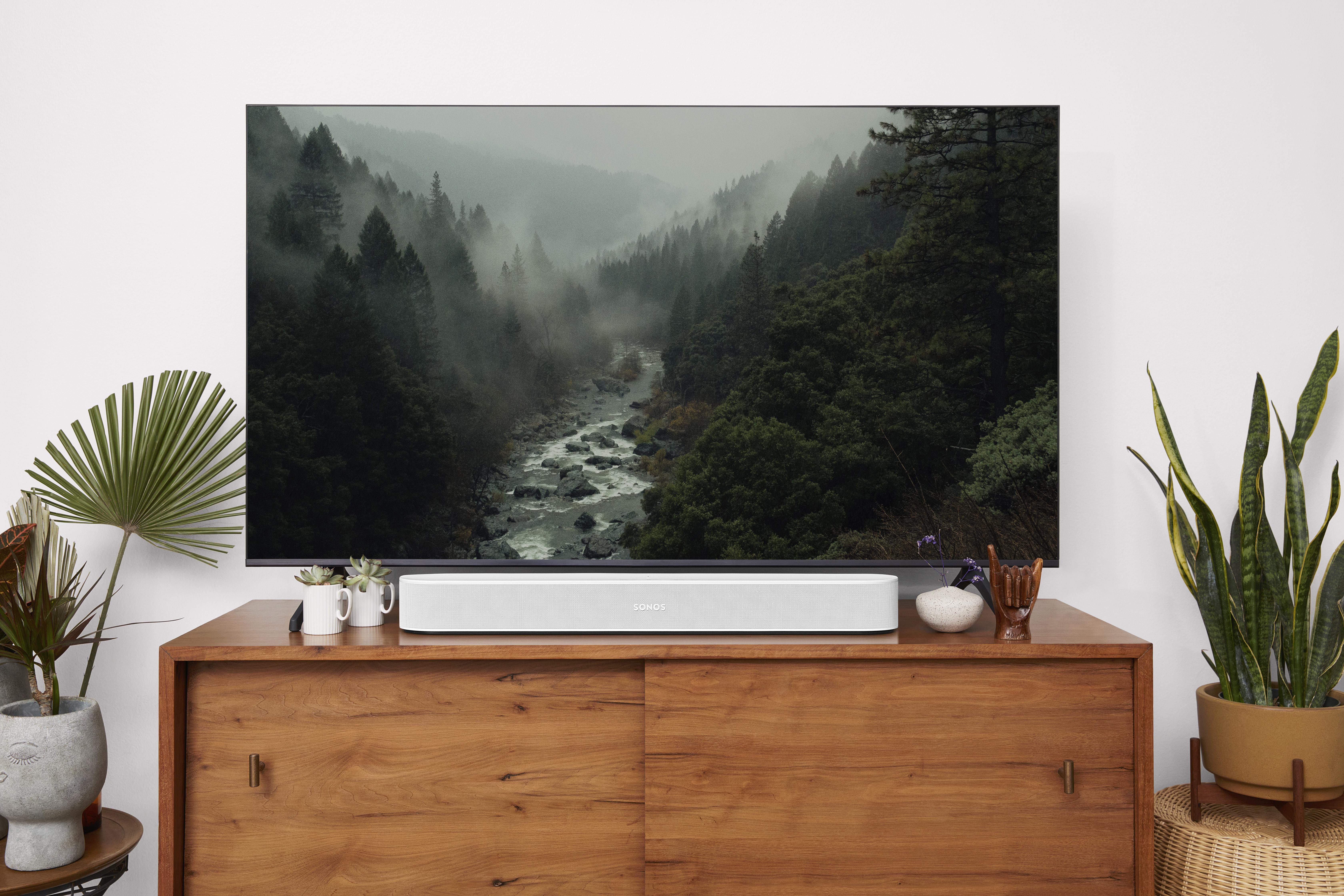 Beam - TV Forest